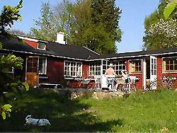 Bornholm: Folkemøde overnatning Sommerhus, Feriehus, Hotel, Pension  -  Sommerhus Leopold 1